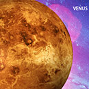 Venus Incense 6 Pack