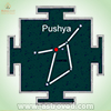 Pushya star